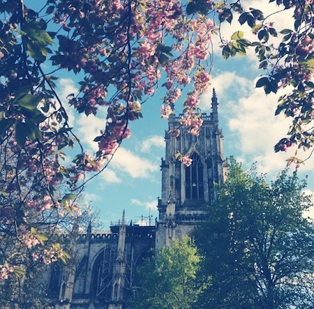 cattedrale a york