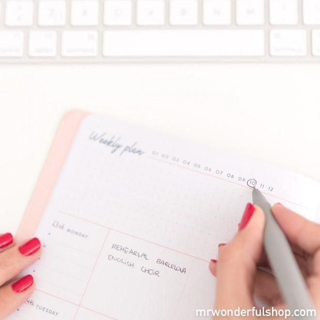 planner settimanale Mr. wonderful