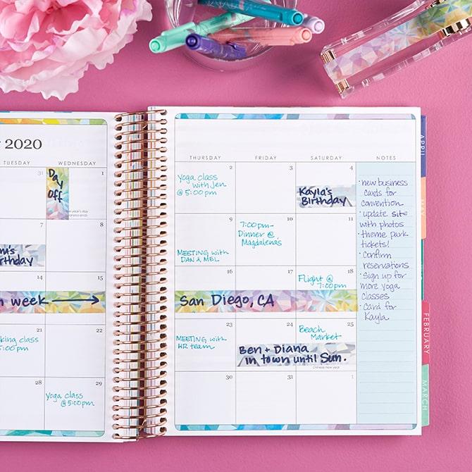 Erin Condren LifePlanner agenda 2020 interno 4